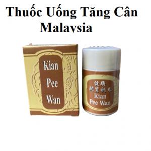 Kian Pee Wan  – Thuốc Tăng Cân – Loại 3