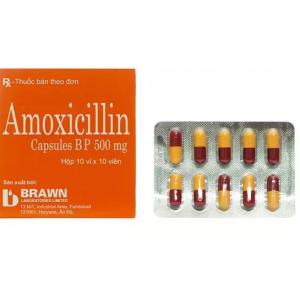 Amoxicilin 500mg – Hộp – DP Ấn Độ